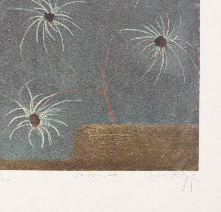 Spiroflora - Original Etching and Aquatint by J.J.J. Rigal - 1971 For Sale 1
