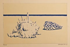 Seashells - Original Lithograph by Gino Guida - 1968
