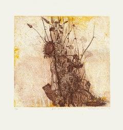 Dry Flowers - Original Etching by N. Soscia - 1970s