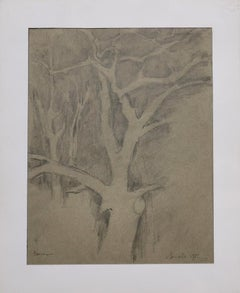 Tree of Life - Original Pencil Drawing - 1982