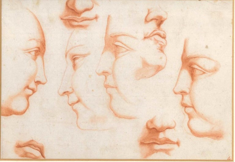 Anatomic study of faces is a sublime original drawing (red chalk drawing on laid and watermarked paper at the center) by an exponent of the Italian School of the XVIII century. In very good conditions, except for a light ripple on the higher left