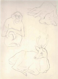 Animal Sketches - 1910s - Ernest Rouart - Drawing - Modern