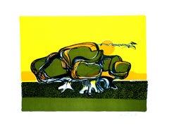 Turtle - Original Lithograph by Carlo Quattrucci - 1971