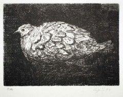 Dove - Original Etching by Valerio Cugia - 1997
