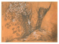 Trees Study - 19th Century - Nino Costa - Drawing - Modern