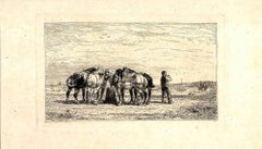 Horses in the Landscape - Original Etching by J.J. Veyrassat - Late 19th Century