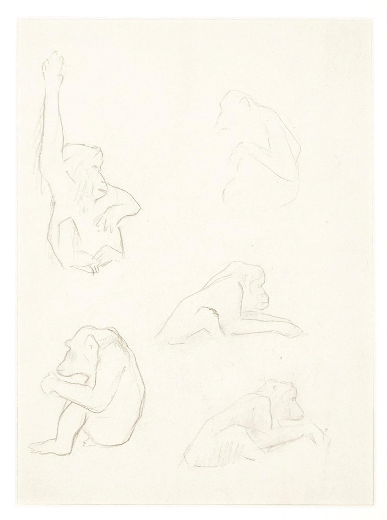 Monkeys - Original Drawing by Ernest Rouart - 1890s