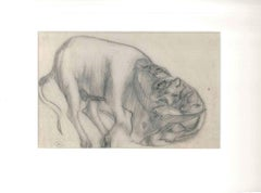 The Feline and the Ox - Original Pencil Drawing by Ernest Rouart - Early 1900