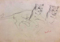 Couple of Cheetahs - Original Pencil Drawing by Ernest Rouart - Early 1900