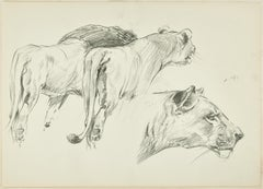 Felines - Original Pencil Drawing by Willy Lorenz - Mid 20th Century