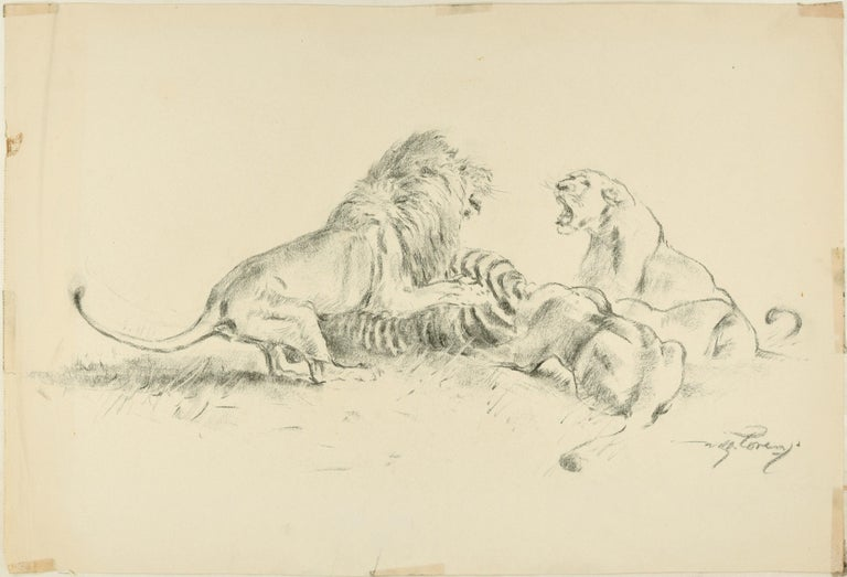 Contending the prey is a beautiful pencil original drawing on ivory-colored paper, realized in the 1940s by the German artist Wilhelm Lorenz, best know as Willi Lorenz. Signed in pencil on lower right margin.   This is a wonderful original drawing