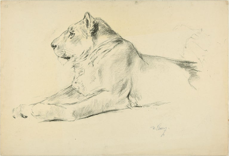 Wilhelm Lorenz Animal Art - Lioness - Original Pencil Drawing by Willy Lorenz - 1940s