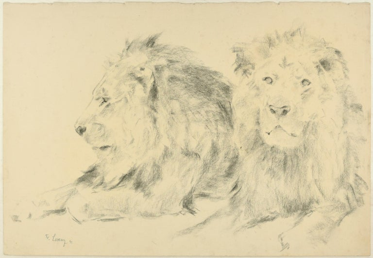 Wilhelm Lorenz Animal Art - Two Lions - Original Pencil Drawing by Willy Lorenz - 1941