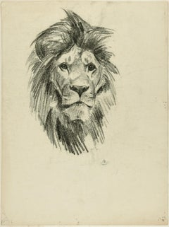 Head of Lion and Tiger - Original Pencil Drawing by Willy Lorenz - 1950s