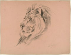 Profile of a Lion - Original Charcoal Drawing by Willy Lorenz - 1940s