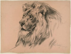 Lion - Original Charcoal Drawing by Willy Lorenz - 1943