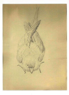 The Sparrow - Original Pencil Drawing by Ernest Rouart - Early 20th Century