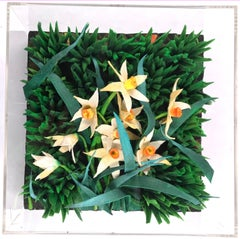 Narcissus - Original Mixed Media by Piero Gilardi - 2002