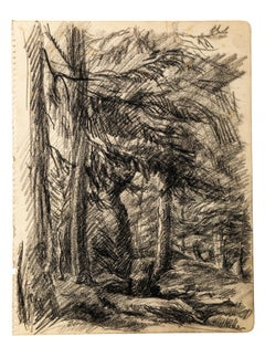 Wood - Original Charcoal Drawing by Jean Chapin - Early 1900