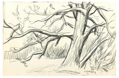 Winter Tree - Original Charcoal Drawing by Serge Fontinsky - 1940s