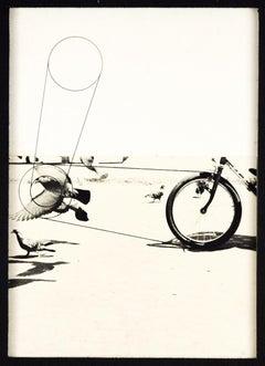 Birds - Original Mixed Media by Pino Settanni - 1970s