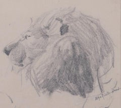 Head of Lion - Original Pencil Drawing by Etha Richter - 1930s