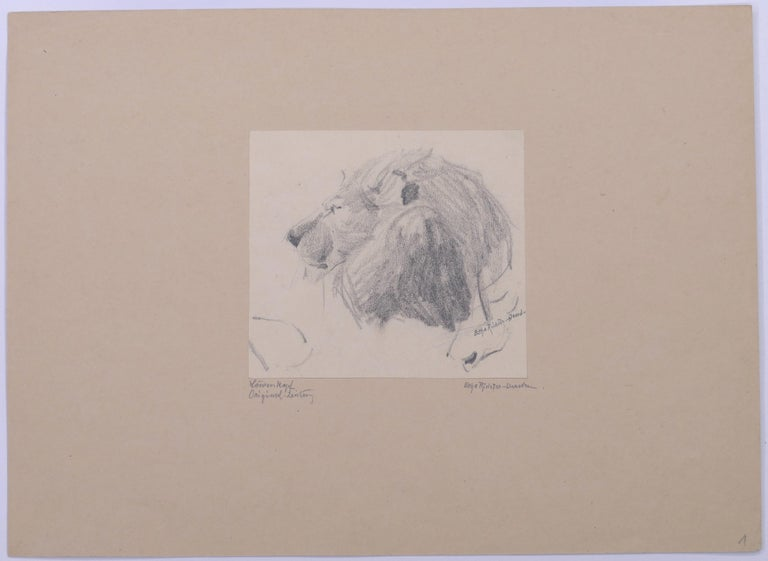 Head of Lion - Original Pencil Drawing by Etha Richter - 1930s For Sale 1