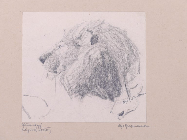Head of Lion - Original Pencil Drawing by Etha Richter - 1930s For Sale 2
