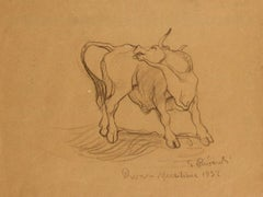 Bull - Original Pencil Drawing by G. Rivaroli . 1932
