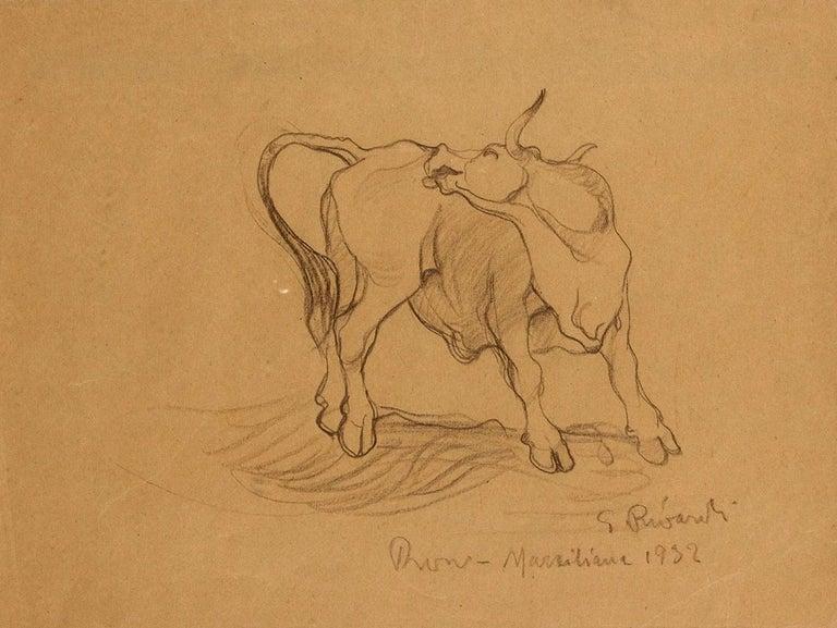 Giuseppe Rivaroli Figurative Art - Bull - Original Pencil Drawing by G. Rivaroli . 1932