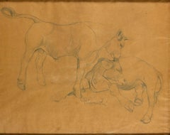 Oxen - Original Pencil Drawing by G. Rivaroli - 1930s