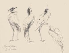Birds - Original Pen on Paper by Jeanne le Soudiere - 20th century