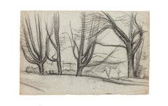Trees - Original Drawing in Pencil and Charcoal - 20th Century