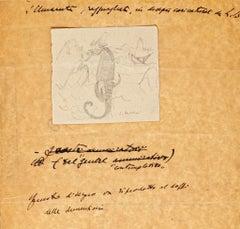 Sea Horse - Original Drawing - 1935