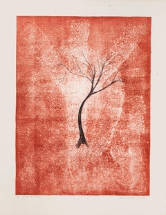 Tree - Original Lithograph by E. Conciatori - 1970s