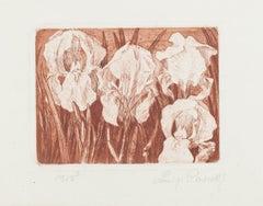 Gladiolus - Original Etching by Luigi Rossetti - 1975