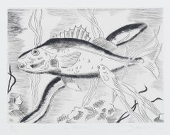 Fish - Original Etching by Maurice Bouval -  1960s