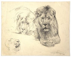 Study of lion and lioness - Original Drawing by Wilhelm Lorenz -Mid-20th Century