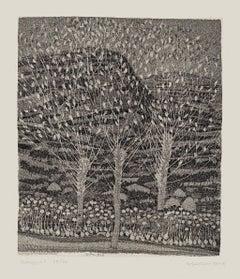 Landscape - Original Etching by Nunzio Gulino - 1970