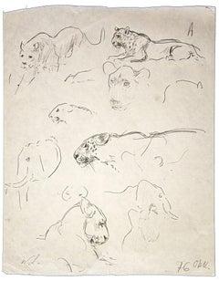 Study of Leopard - Original Pencil by Wilhelm Lorenz - 1971