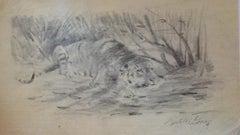 Tiger at Rest - Original Pencil by Wilhelm Lorenz - Mid-20th Century