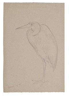 Stork - Original Pencil on Paper - Mid-20th Century