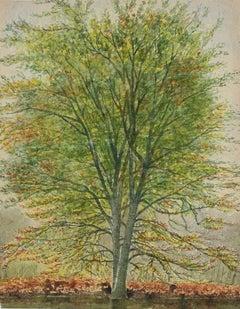 Trees - Original Watercolor - 1930s