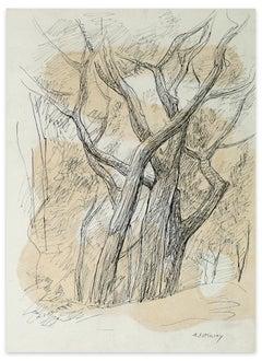 Tree Trunks - Original Ink by S. Fotinsky - Mid-20th Century