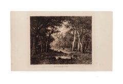 Intérieur de Forêt - Original Etching by Diaz - 1880 ca