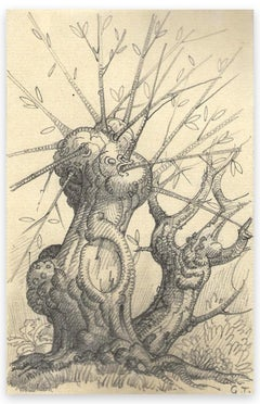 Tree - Original Pencil Drawing by George-Henri Tribout - Early 20th Century