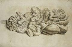 The Internal Organs -  De Humani Corporis Fabrica - by Andrea Vesalio - 1642