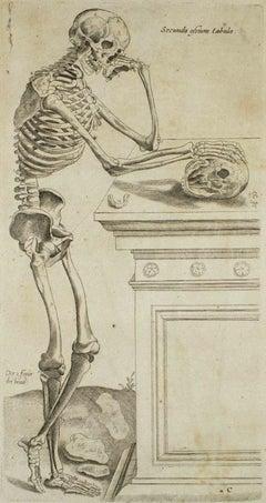 Thinking Skull - The Bones - From De Humani Corporis Fabrica Tab. no. 7 - 1642