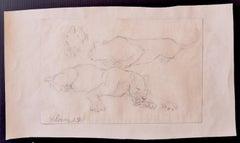 Study of Lions - Original Drawing by Wilhelm Lorenz - 1933