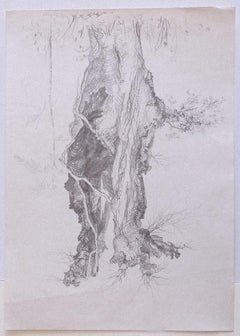 Tree - Original Pencil Drawing by A. R. Brudieux - 1970s